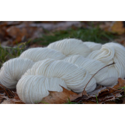 Manos del Uruguay Silk blend 2800 Cream